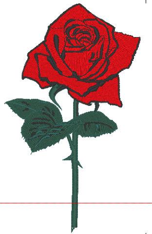 枝付き薔薇